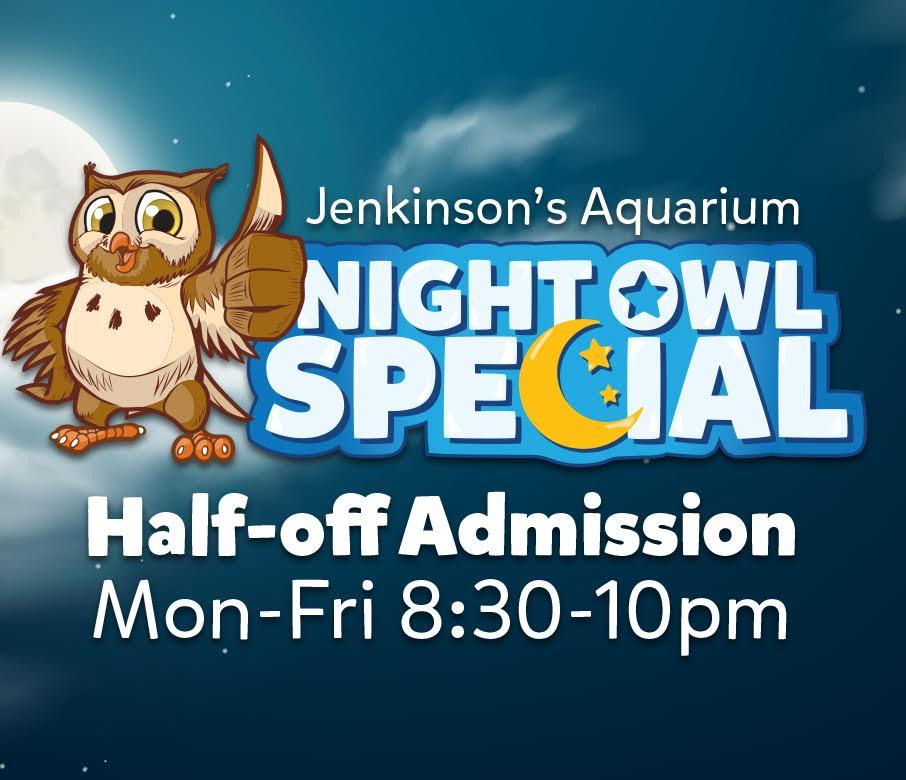 Night Owl Special