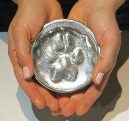 Hot Paws Kits: For all PET LOVERS