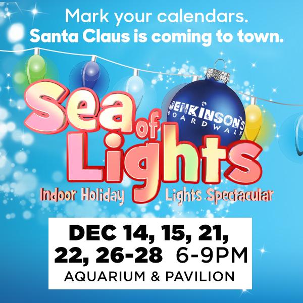 Sea of Lights at Jenkinson's Boardwalk