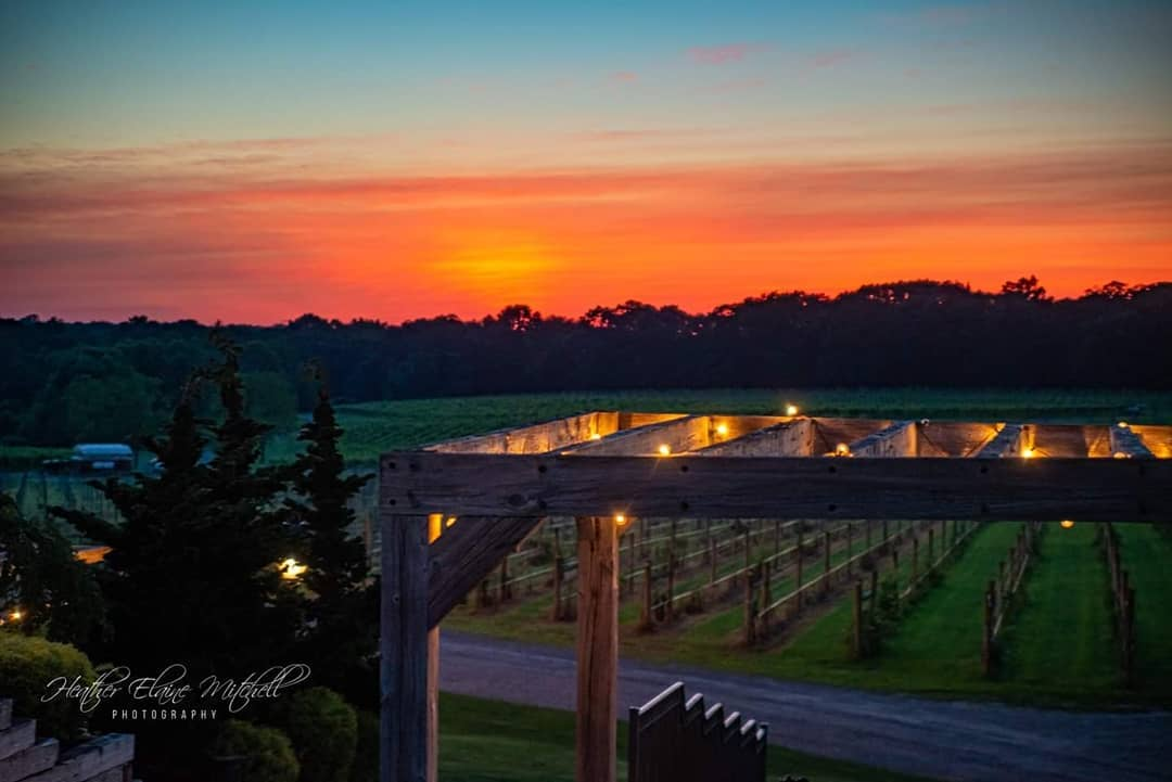 Fire Pit Fridays at Laurita Winery
