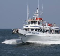 CHARTER BOATS FOR NIGHT FISHING IN BELMAR NJ