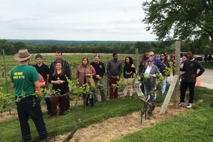 Twilight Tour & Tasting at Old York Cellars