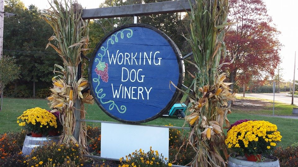 Holiday Wine Trail Weekend at Working Dog Winery