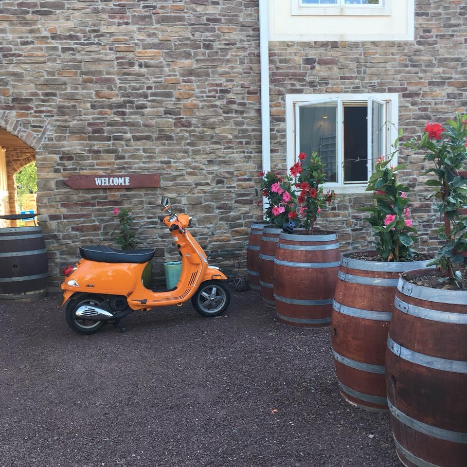 Friendsgiving at Hopewell Valley Vineyards