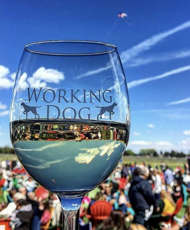 Live Music at Working Dog Winery