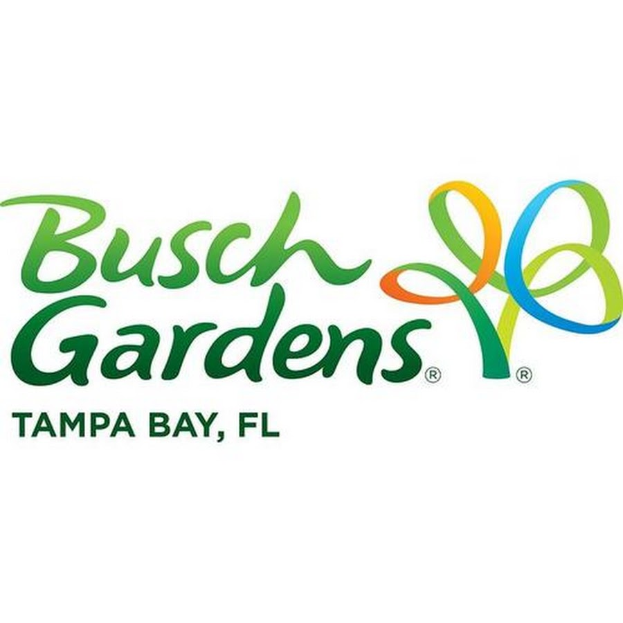 Take a trip to Busch Gardens Tampa Bay!