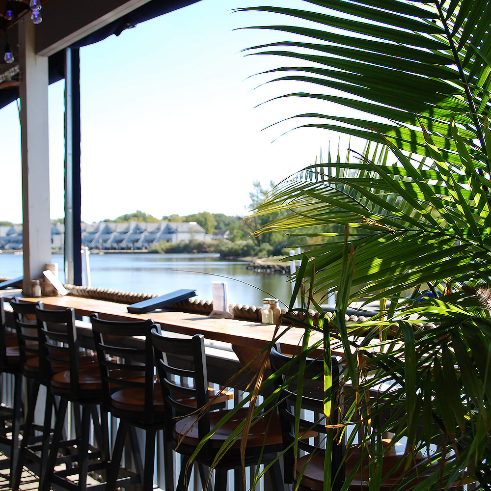 Waterfront Drinks & Dining