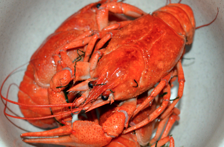 Thursdays: $29.99 Lobster Night at Mar Belo