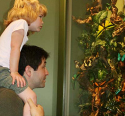 Enjoy a Bug Bash at Insectropolis!